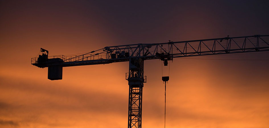 crane in the sunset